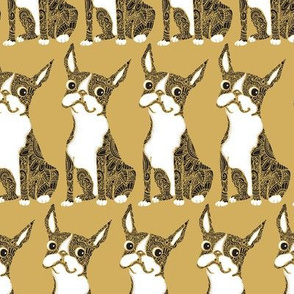 Boston Terrier Mustard