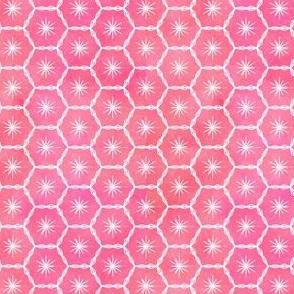 Cacti Pink Geo