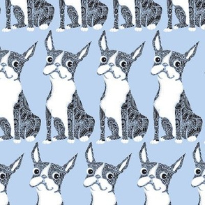 Boston Terrier Periwinkle