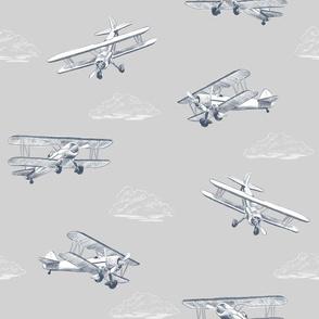 Biplane Barnstormers Airplane Print