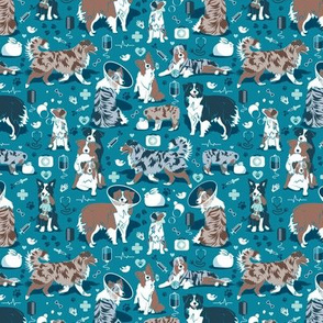 Tiny scale // VET medicine happy and healthy Aussie friends // turquoise background aqua details navy blue white and brown Australian Shepherds dogs