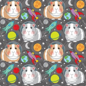 medium guinea pigs in space