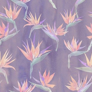 Pianted Bird light purple
