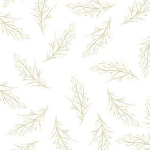 Fine leaves on white