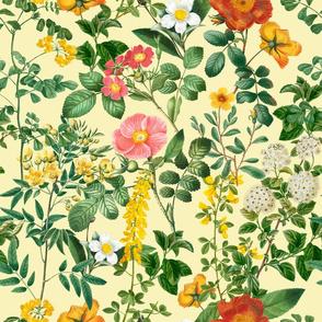 Nostalgic Garden Flowers