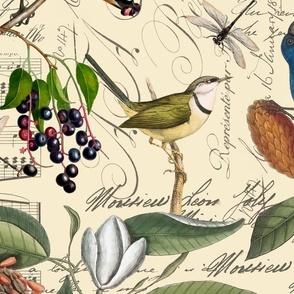 Vintage Magnolia And Birds