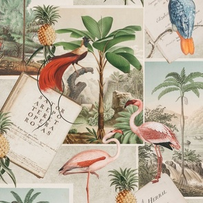 Vintage Botanical Collage With Birds And Book