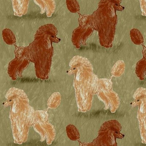 Red and Apricot Poodles on Sage Green