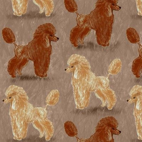 Red and Apricot Poodles on Reddish Beige