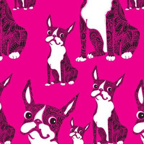 Boston Terriers Hot Pink