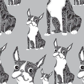 Boston Terriers Light Gray