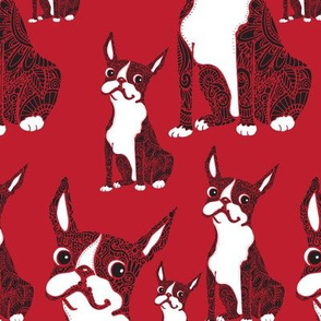 Boston Terriers Red