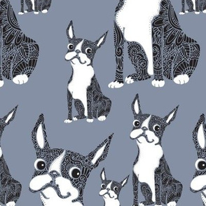 Boston Terriers Blue Gray