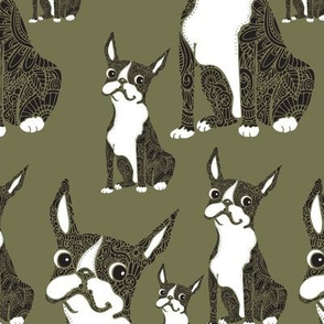 Boston Terriers Olive Green