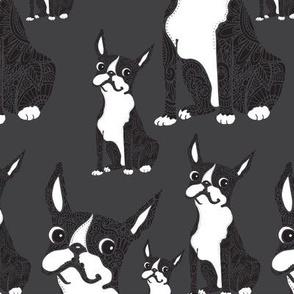 Boston Terriers Dark Gray