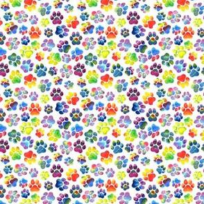 Rainbow Pawprints on White Small