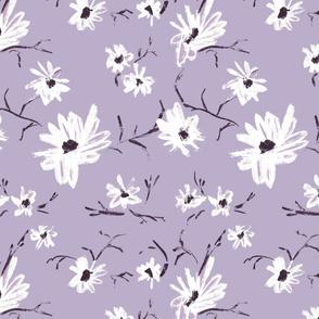 Daisy Lilac