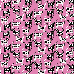 Cute Funny Cows on Pink / Small scale
