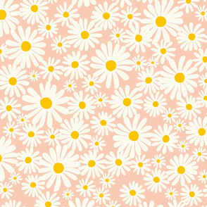 Daisies with Pink Background