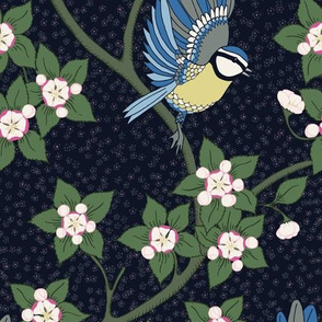 Bluetit and Apple blossoms by night