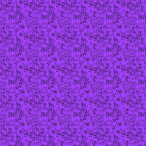 Scatter Purple and Black