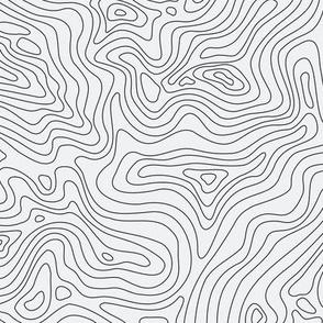 Fingerprint of the Land - Black and White