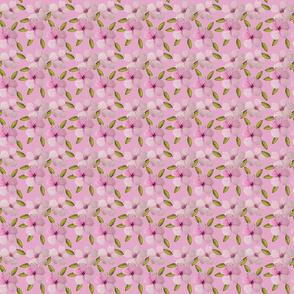 Pink flowers over polka dot- 24x24 sur rose