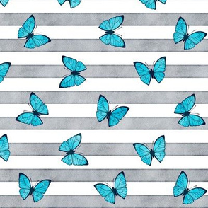 Small Blue Emperor Butterflies on Grey Stripes