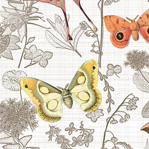 moths off the wall toile linen jumbo