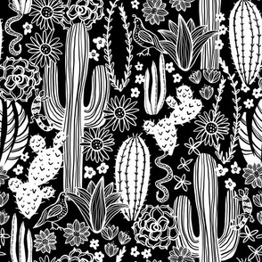 Sonoran Landscape (Black and White)