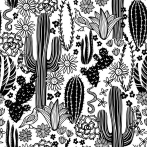 Sonoran Landscape (White and Black)