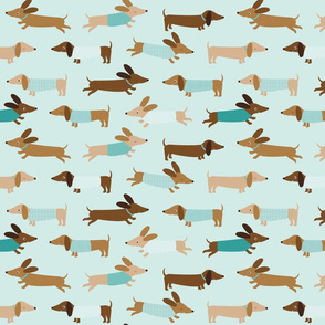 Dachshunds with mint
