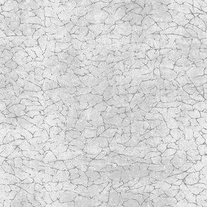 Urban Cracked Texture- Light Grey
