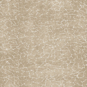 Surface Cracked Texture- Tan