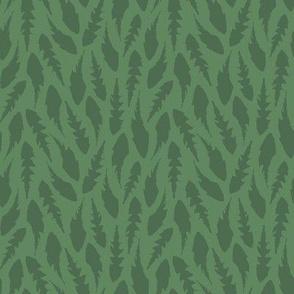 Green Dandelion Leaves