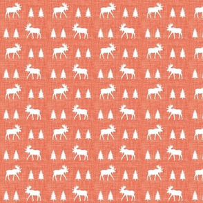 """3/4"""" moose trot // coral linen"""