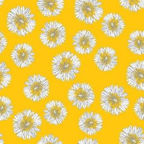 Little Yellow Dandelions