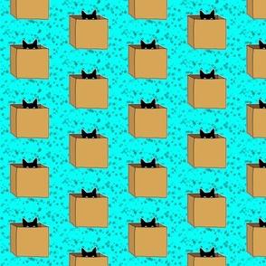 cat in a box - blue