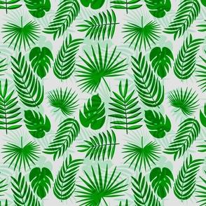 Tropical leaves / summer beach vibes