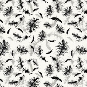 black feathers on off white