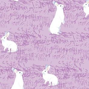 White Rabbits-LILAC