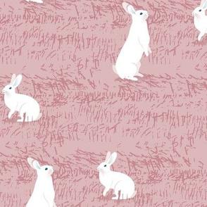 White Rabbits-PINK