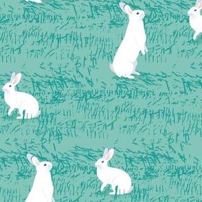 White Rabbits-TURQUOISE