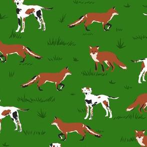 Hound & Fox