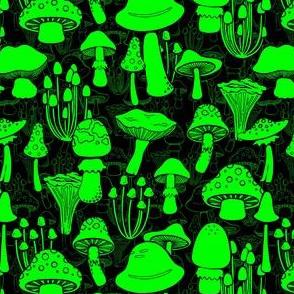 Glow Shrooms//Midnight