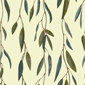 Australian Pink Eucalyptus Leaves