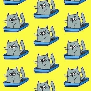 Cat in a Cat Box