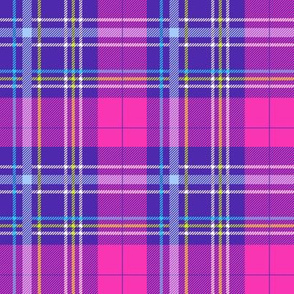 Whimsical Anaya Plaid-Purple