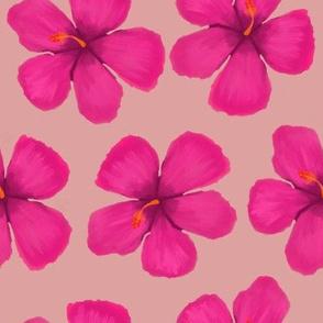 Hibiscus bright magenta