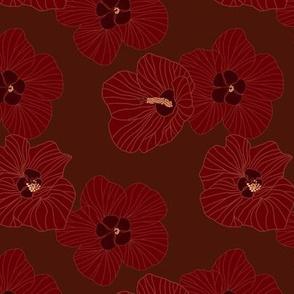 Hau flowers on dark brown
